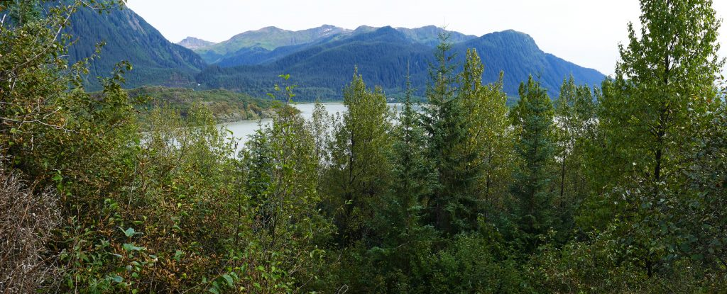 Mendenhall Lake panorama
