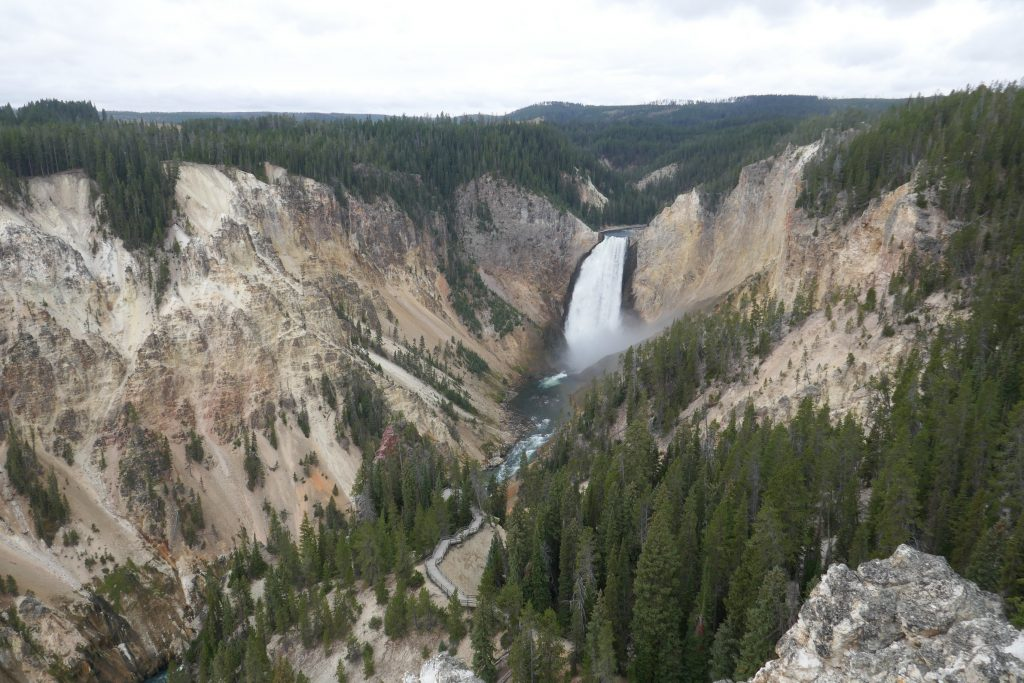 The Lower Falls and the Grand Canyon of the Yellowstone, seen from Lookout Point