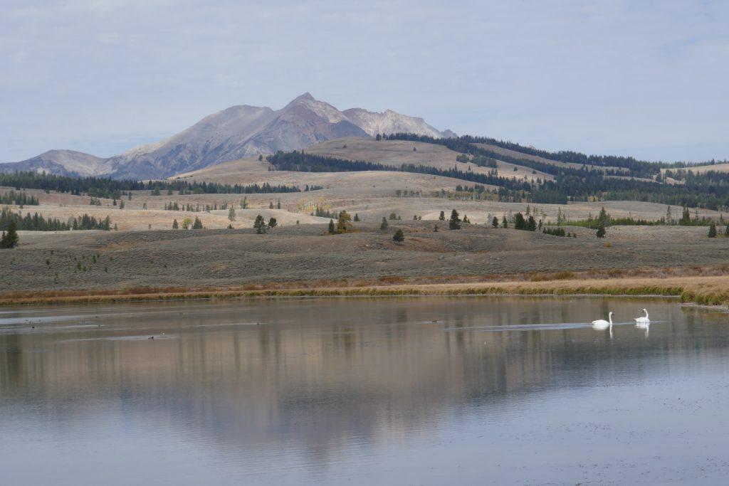 Swan Lake and Gallatin Range