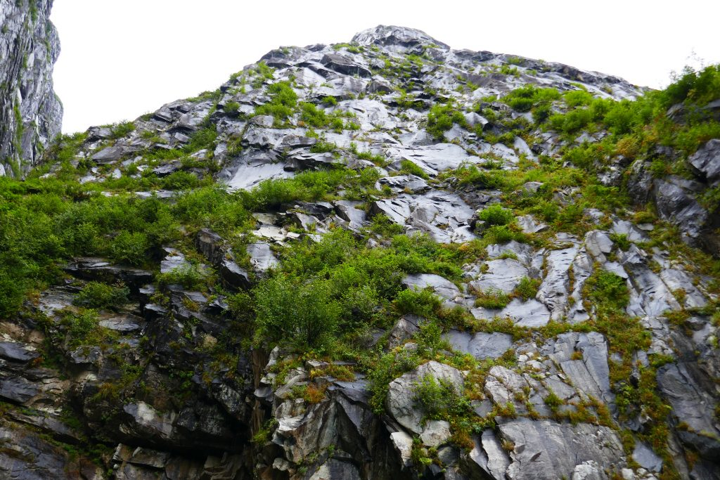 Rock face alongside the fjord