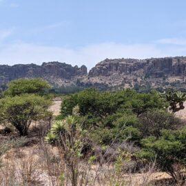 A view from Sierra de Órganos National Park